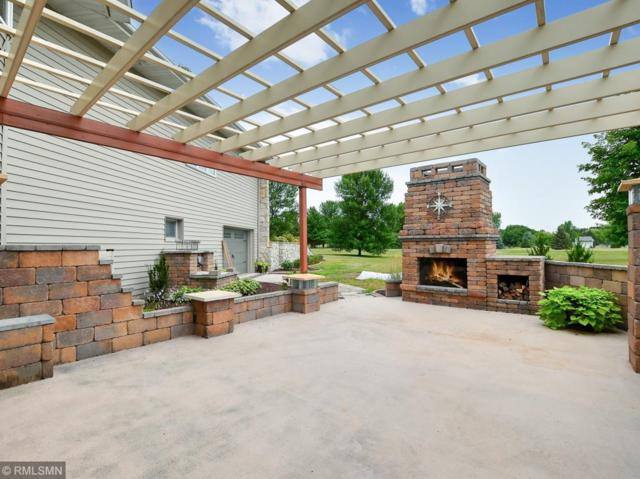 14207 Raspberry Drive, Rogers, MN 55374 (#5028975) :: House Hunters Minnesota- Keller Williams Classic Realty NW