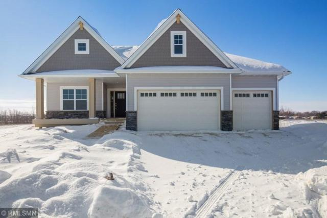 17826 Element Avenue, Lakeville, MN 55044 (#5133667) :: The Preferred Home Team