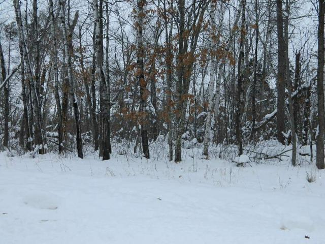 Tbd White Overlook, Breezy Point, MN 56472 (#5133991) :: The MN Team