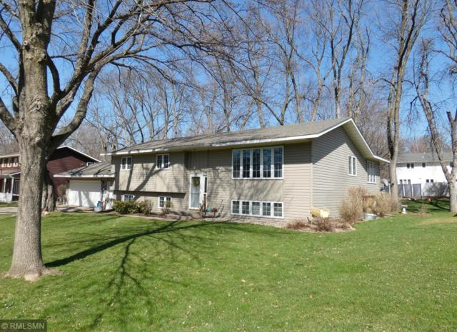 200 Interwood Drive, Glencoe, MN 55336 (#5134051) :: The Odd Couple Team