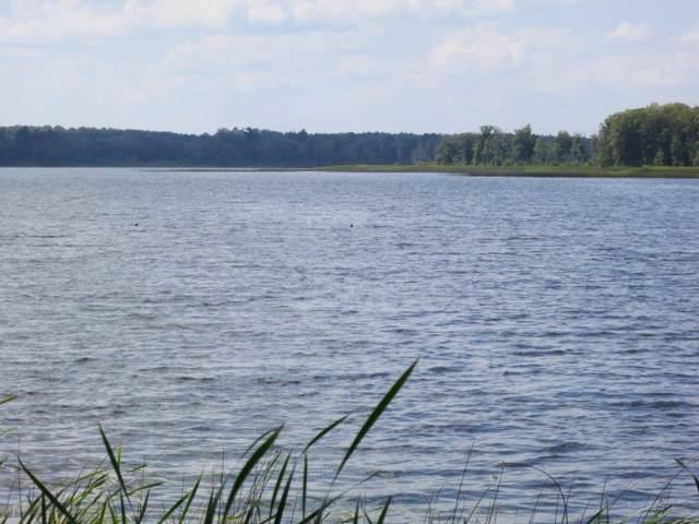1620 Grouse Pines Lane, Boy Lake Twp, MN 56655 (#5135800) :: The Michael Kaslow Team