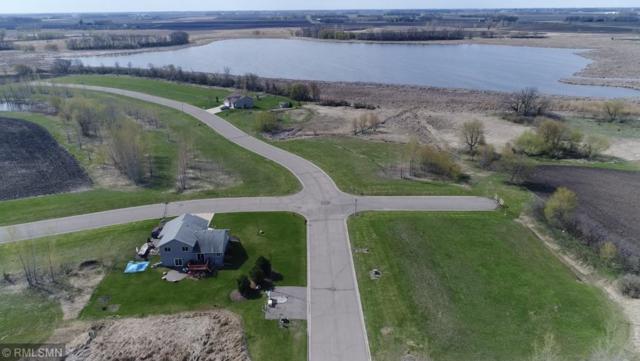 195 Lake Erin Drive, Green Isle, MN 55338 (#5135801) :: House Hunters Minnesota- Keller Williams Classic Realty NW