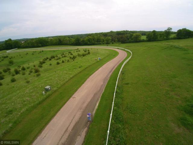 7375 Equestrian Way, Minnetrista, MN 55331 (#5136826) :: Olsen Real Estate Group