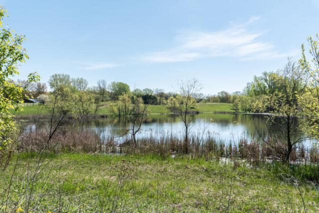 19399 Stonegate Drive, Credit River Twp, MN 55372 (#5141285) :: The Odd Couple Team