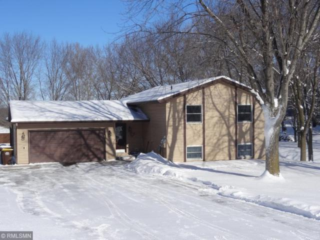 599 Rolling Meadows Lane SE, New Prague, MN 56071 (#5145742) :: The Preferred Home Team