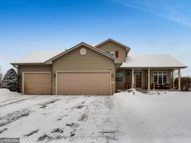 14047 Lynch Drive, Rogers, MN 55374 (#5146220) :: House Hunters Minnesota- Keller Williams Classic Realty NW