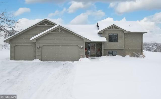 1250 Lake Susan Hills Drive, Chanhassen, MN 55317 (#5146378) :: The Sarenpa Team