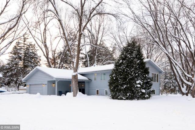 18330 30th Place N, Plymouth, MN 55447 (#5148173) :: The Sarenpa Team