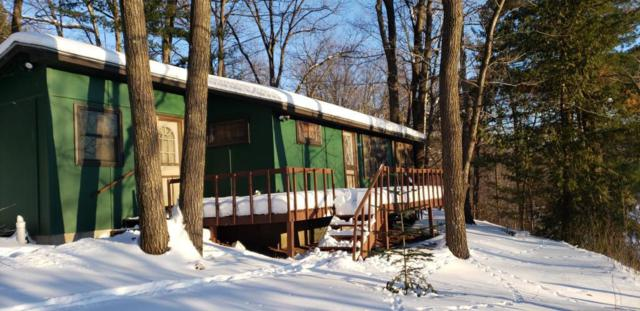 25724 Crooked River Road, Chengwatana Twp, MN 55063 (#5149403) :: Centric Homes Team