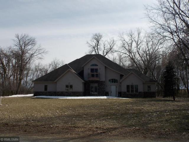 19123 Judson Court, Acoma Twp, MN 55350 (#5203368) :: The Odd Couple Team