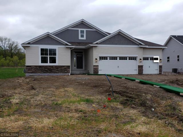 9789 Jasmine Avenue NE, Hanover, MN 55341 (#5207011) :: House Hunters Minnesota- Keller Williams Classic Realty NW