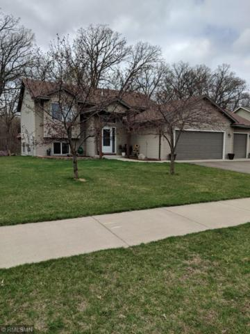11734 35th Avenue SE, Becker, MN 55308 (#5207398) :: The Odd Couple Team