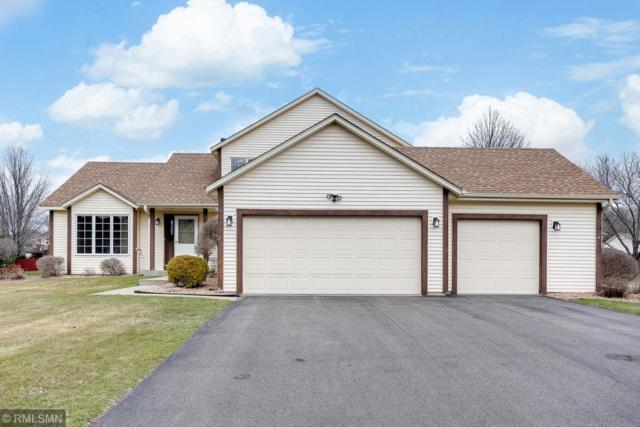 9810 85th Street S, Cottage Grove, MN 55016 (#5216528) :: The Snyder Team