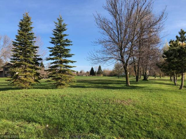 6620 71st Lane N, Greenfield, MN 55357 (#5224455) :: The Odd Couple Team
