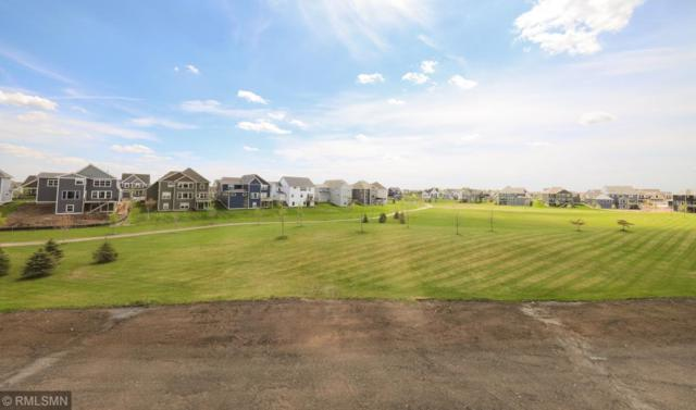4690 165th Street W, Lakeville, MN 55044 (#5225350) :: The Preferred Home Team