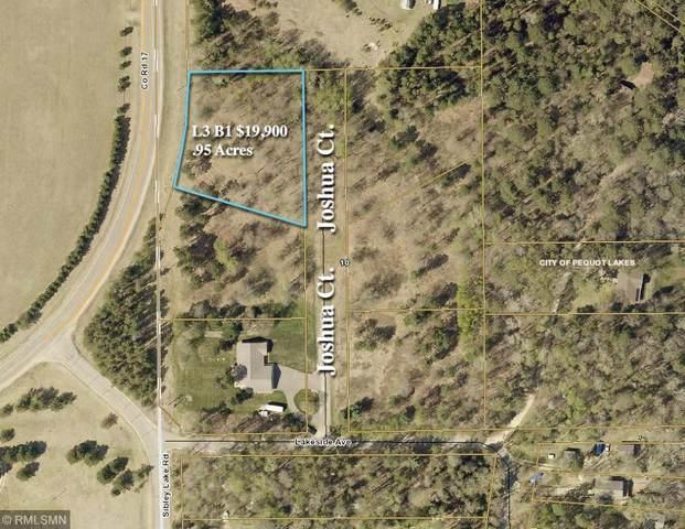 L3B1 Josh Court, Pequot Lakes, MN 56472 (#5227272) :: Twin Cities South