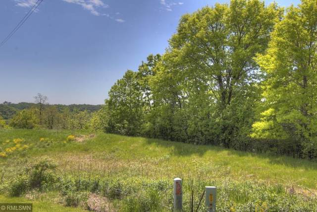 422 Westwood South Street, Red Wing, MN 55089 (#5240609) :: Bre Berry & Company