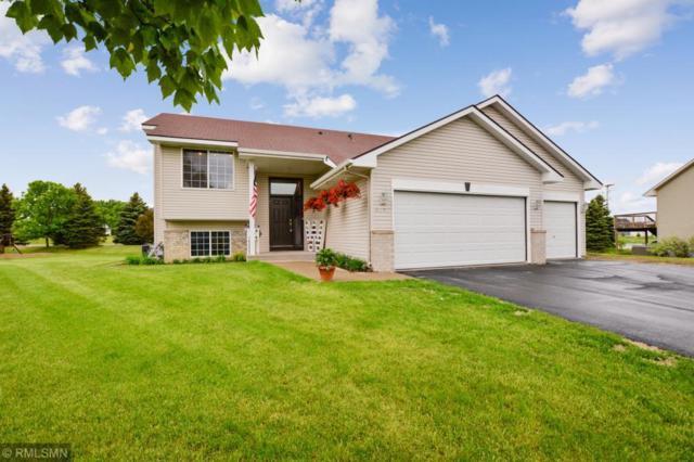 3387 Kahler Court NE, Saint Michael, MN 55376 (#5241610) :: House Hunters Minnesota- Keller Williams Classic Realty NW