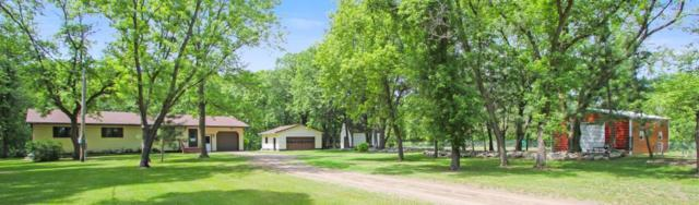 20483 Hickory Road, Little Falls, MN 56345 (#5248615) :: The Sarenpa Team