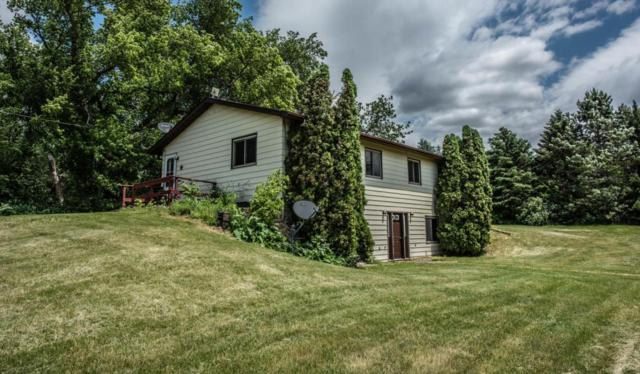 12455 Goodhue Avenue, Dennison, MN 55018 (MLS #5251506) :: The Hergenrother Realty Group