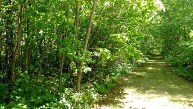 lot 1 BLK 11 Isle Harbor Drive, Federal Dam, MN 56641 (MLS #5251791) :: The Hergenrother Realty Group