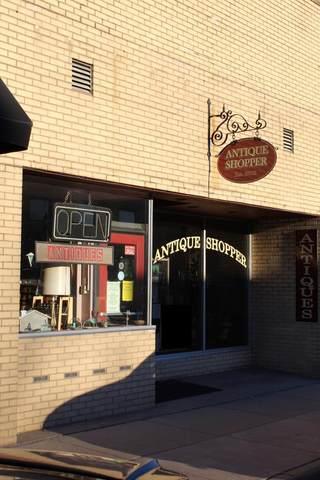 113 S Lakeshore Drive, Lake City, MN 55041 (#5254162) :: The Jacob Olson Team