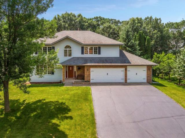 2704 Horseshoe Lane, Woodbury, MN 55125 (#5259961) :: Olsen Real Estate Group