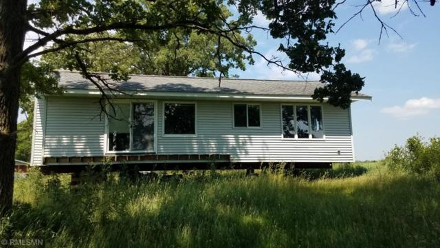 331 9th Street W, Browerville, MN 56438 (MLS #5260141) :: The Hergenrother Realty Group