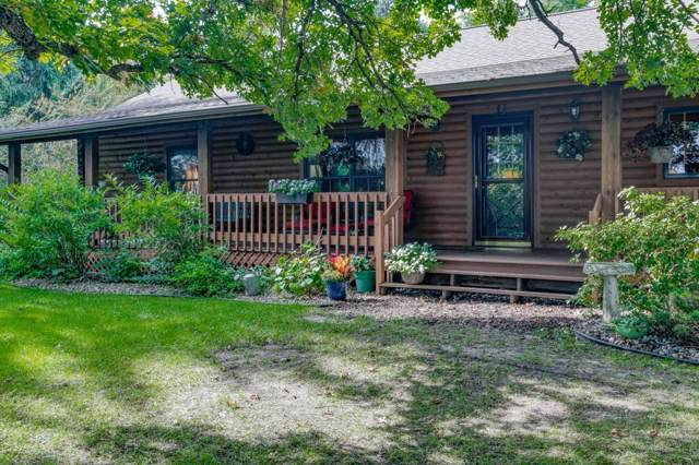 30461 354th Street, Sharon Twp, MN 56058 (MLS #5295038) :: The Hergenrother Realty Group