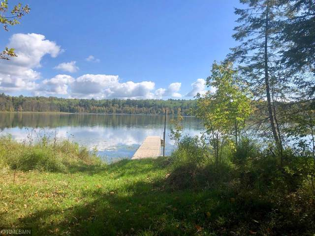 TBD Scenic Lake Drive Nw, Akeley, MN 56433 (MLS #5296164) :: The Hergenrother Realty Group
