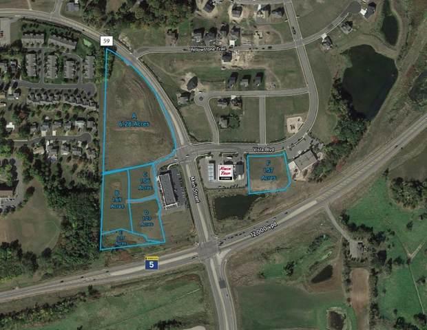 710 Vista-D Boulevard, Waconia, MN 55387 (#5316766) :: Twin Cities Elite Real Estate Group | TheMLSonline