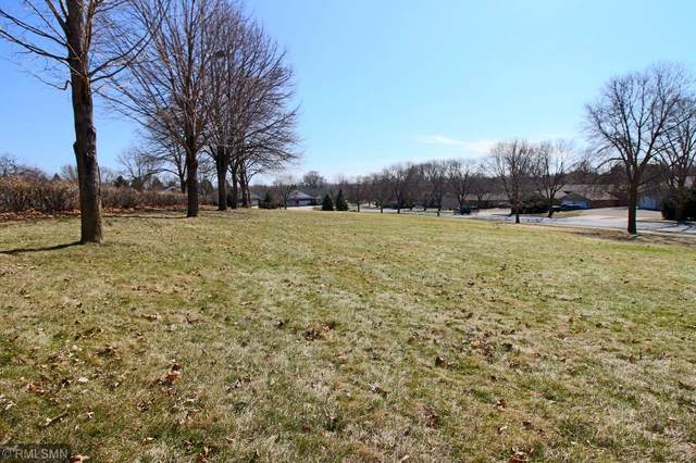 1450 4th Street W, Hastings, MN 55033 (#5320231) :: Holz Group