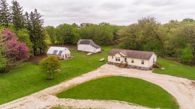 9850 80th Street SW, Rock Dell Twp, MN 55940 (#5353028) :: The Odd Couple Team