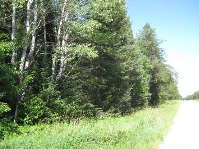TBD County Road 336 & 530, Balsam Twp, MN 55709 (#5433956) :: Bre Berry & Company