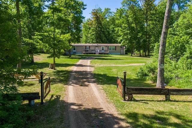6741 Eagle Claw Drive NE, Longville, MN 56655 (#5486846) :: Bos Realty Group