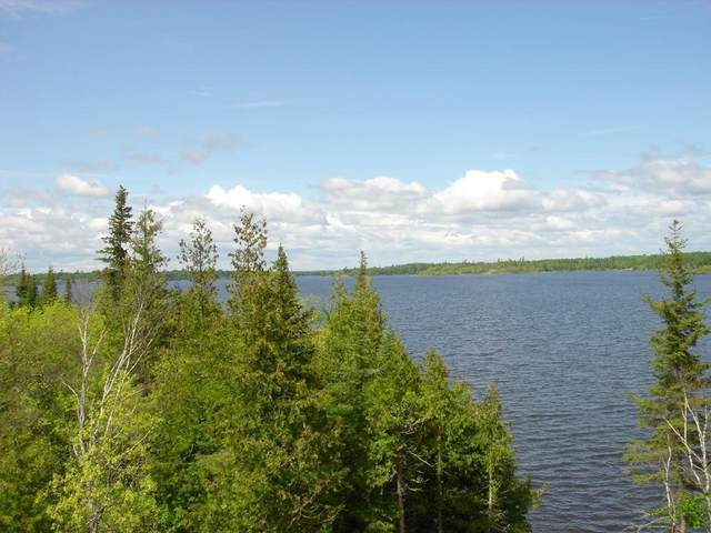 14 Brush Island NW, Angle Twp, MN 56711 (#5498342) :: Carol Nelson | Edina Realty