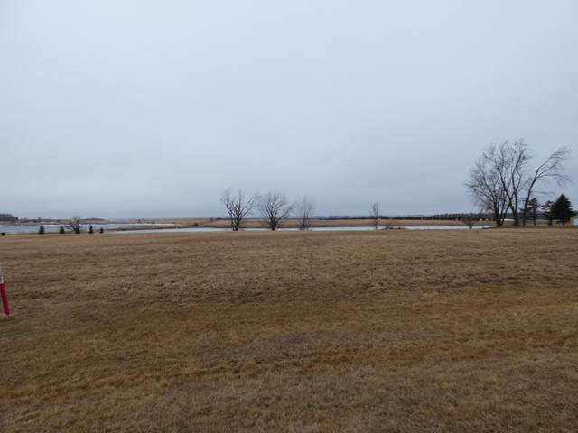 120 Heritage Trail, Hadley, MN 56151 (#5504469) :: Holz Group