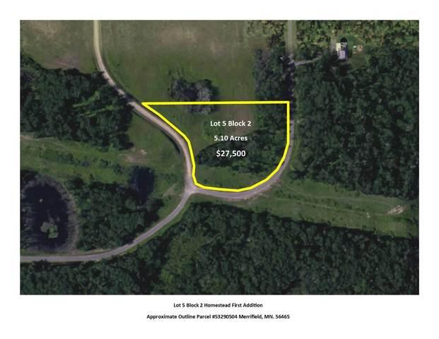 L5B2 Settler Trail, Merrifield, MN 56465 (#5505949) :: The Pietig Properties Group