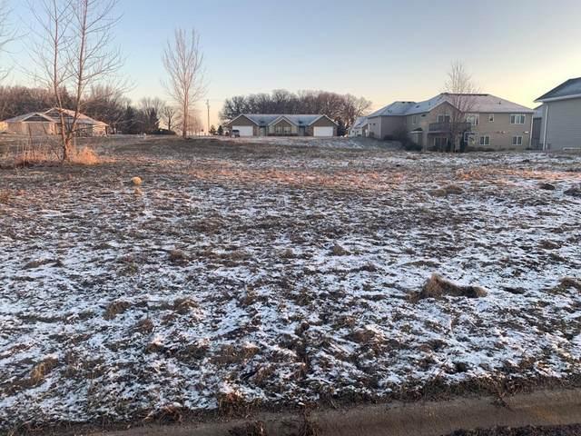 1810 Creek View Lane, Owatonna, MN 55060 (#5510467) :: Twin Cities Elite Real Estate Group | TheMLSonline
