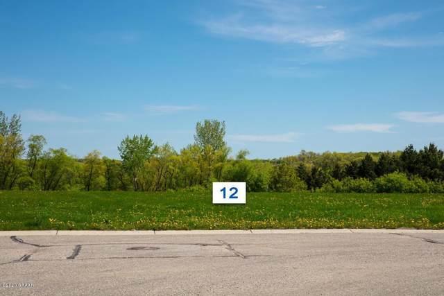 508 Lot#12 5th Street E, Brandon, MN 56315 (#5520163) :: Carol Nelson | Edina Realty