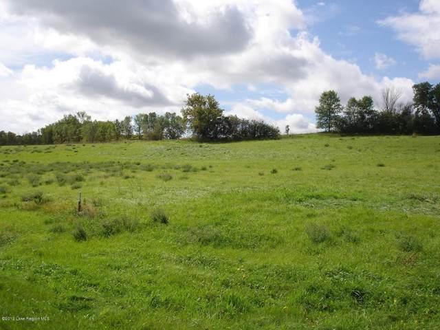 3797 Eagle Ridge Road, Fergus Falls, MN 56537 (#5544439) :: Holz Group