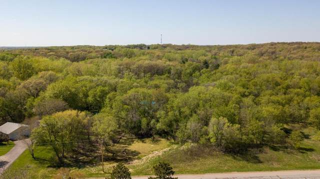 XXXX Woodhill Boulevard, Lakeville, MN 55044 (#5554895) :: The Preferred Home Team