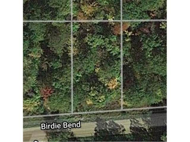 xxxx Birdie Bend, Onamia, MN 56359 (#5556583) :: Straka Real Estate