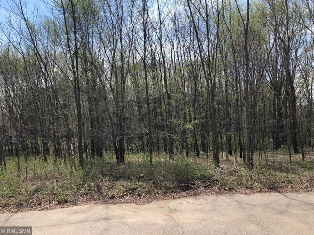 Lot 30 Tanglewood Ct, Pepin, WI 54759 (#5557061) :: The Preferred Home Team