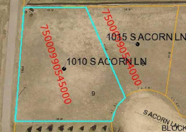1010 S Acorn Lane, Parkers Prairie, MN 56361 (#5557661) :: Bre Berry & Company