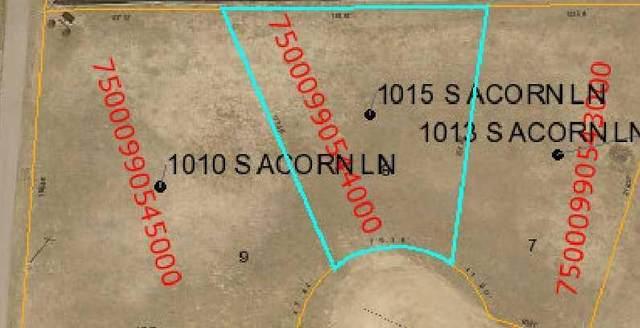 1015 S Acorn Lane, Parkers Prairie, MN 56361 (#5557718) :: Bre Berry & Company