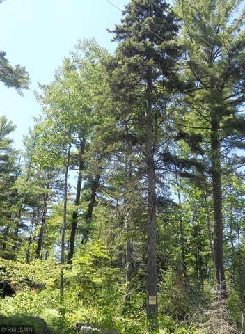 XXXX Golden Ridge Trail, Ely, MN 55731 (#5557737) :: The Janetkhan Group