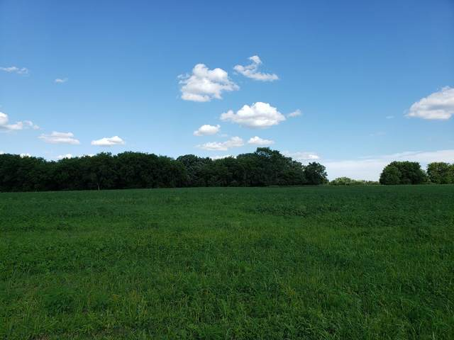 Lot 3 State Highway 15, Kimball, MN 55353 (MLS #5558232) :: The Hergenrother Realty Group