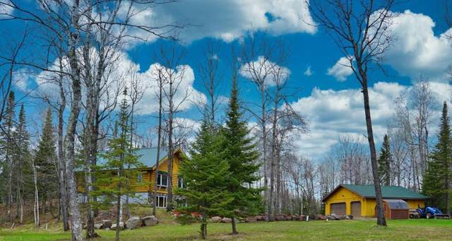 5748 Lavaque Road, Duluth, MN 55803 (#5558776) :: The Preferred Home Team