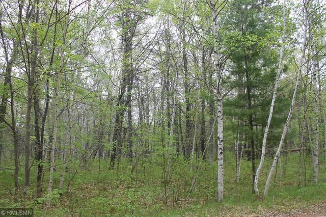 XXX Fawn Forest Lot 10 Road, Nisswa, MN 56468 (#5570963) :: Holz Group